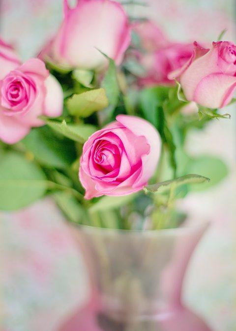 Comment conserver son bouquet de roses plus longtemps?
